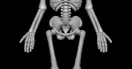 Was tun bei Osteoporose?