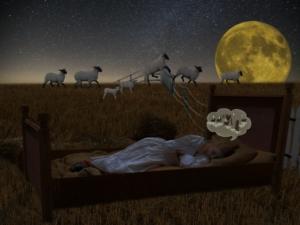 wie besser schlafen